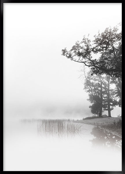 Posters - Morning mist no2