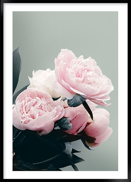 Posters Pion no2 - Blommor