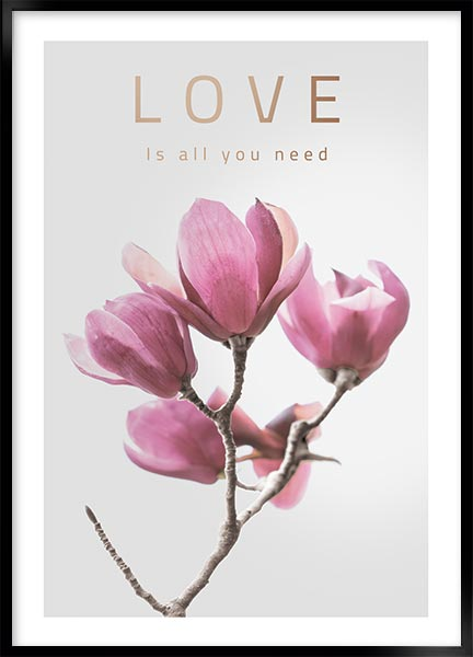 Posters - Love
