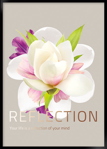 Posters - Reflection