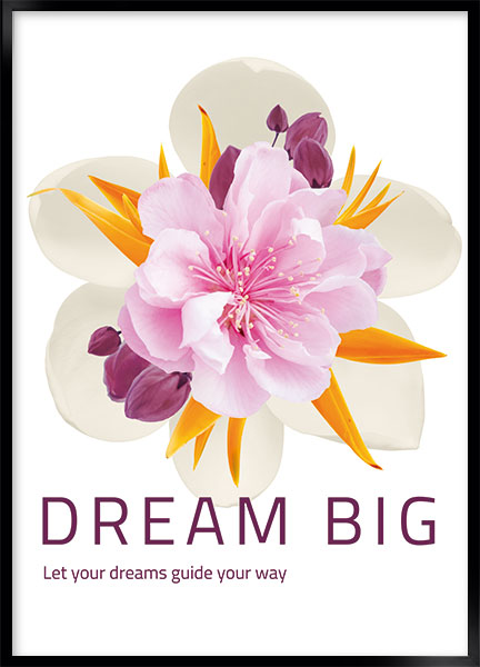 Posters - Dream big