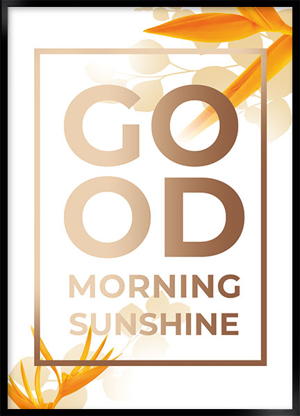 Posters - Good morning
