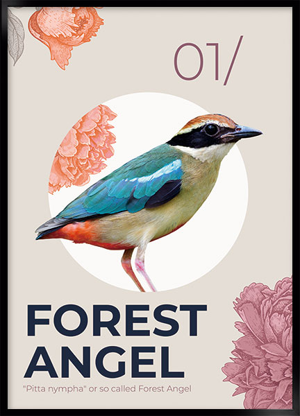 Posters - Forest angel