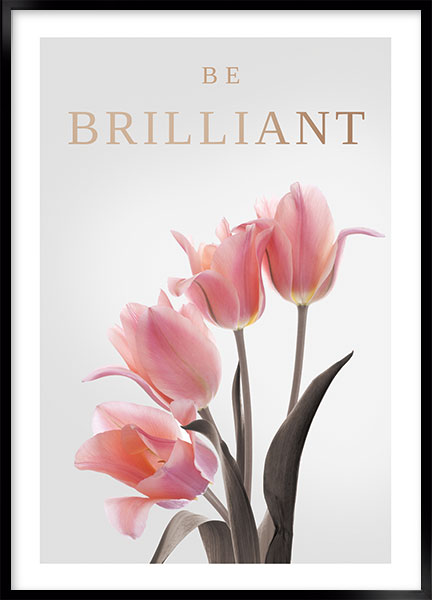Posters - Be brilliant