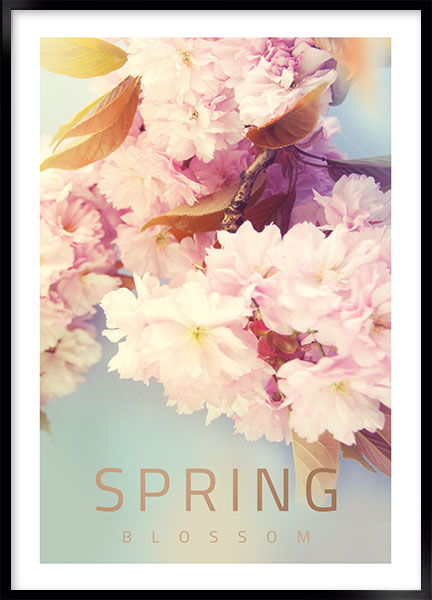 Posters - Spring blossom