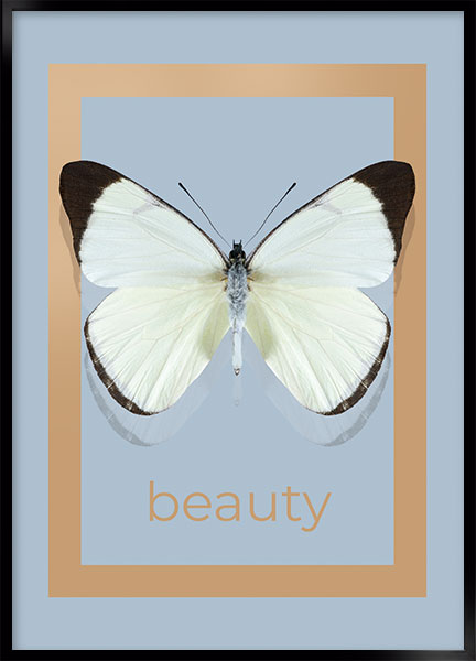 Posters - Beauty
