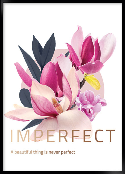 Posters - Imperfect